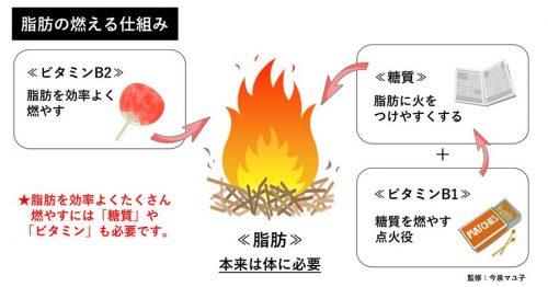 バランスの良い食事で理想的なダイエット – 缶詰・びん詰・レトルト食品情報|公益社団法人日本缶詰びん詰レトルト食品協会 :: Japan  Canners Association ::
